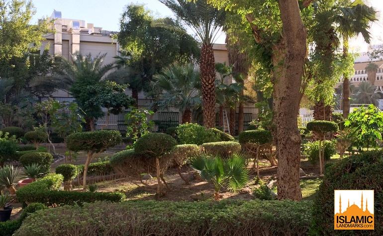 Inside the Saqeefah garden