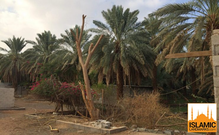 Inside the garden of Salman Farsi (رضي الله عنه)