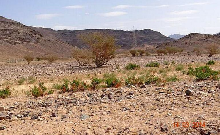 Wadi Al-Safra