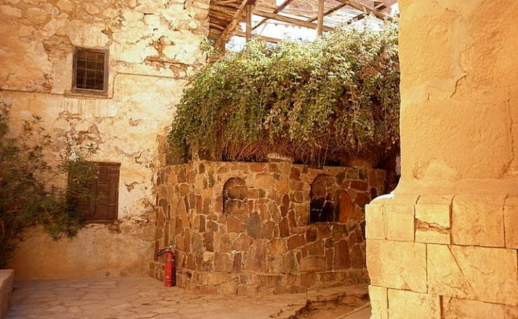 The Burning Bush in St.Catherines Monastery
