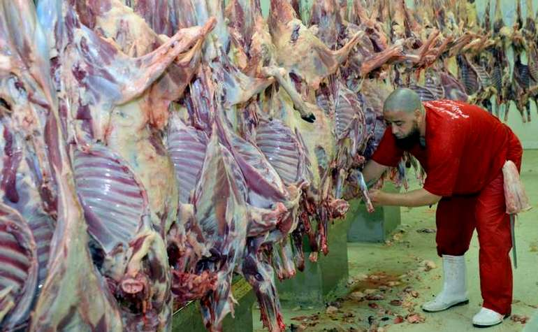 Slaughtered animals during Hajj being processed